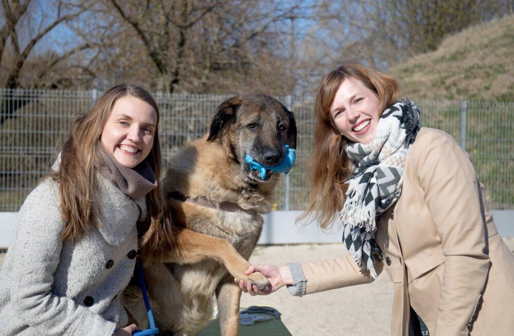 Varjupaigakoer Charlie hakkab vanglakoer Charlieks. Pildil on Charlie koos projekti meeskonna liikmete Minna Silla (vasakul) ja Mariliis Tilgaga.