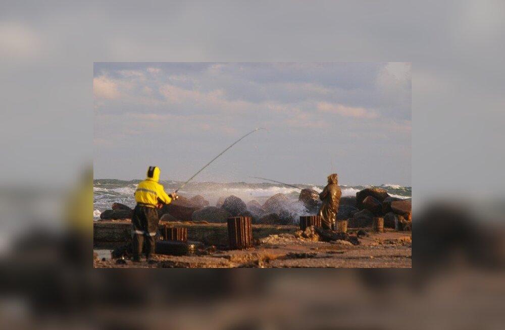 TORM: Kalamehed õngitsesid tuules ja tuiskavas vees lesta