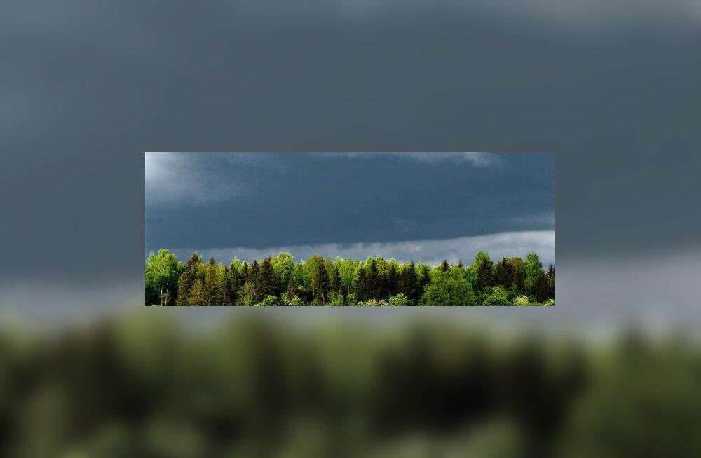 Tulekul taas üks vihmane suvi?
