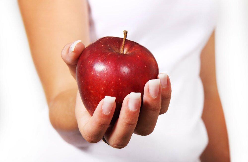 5 правил здорового питания, которые не прошли проверку временем