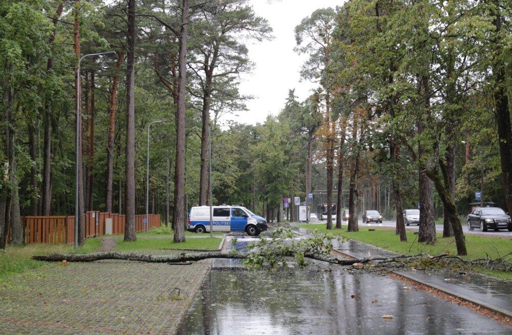 ГЛАВНОЕ ЗА ДЕНЬ: Штормовое предупреждение по всей Эстонии и дорожные аварии в Таллинне