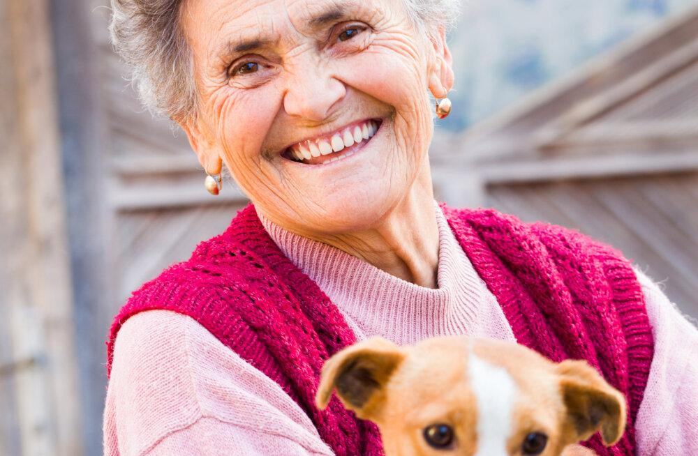 Nõuanded eakamale loomavõtjale: need 8 punkti aitavad otsustada, milline lemmikloom sulle sobib