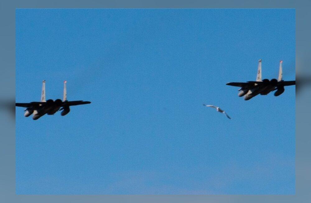 NATO hävitajate ülelend tänase perepäeva raames