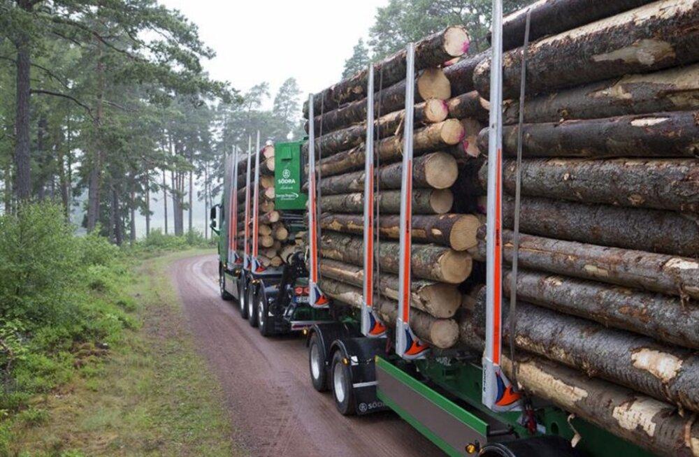 Tselluloosihiid ostis Lätis hiiglasliku koguse metsa