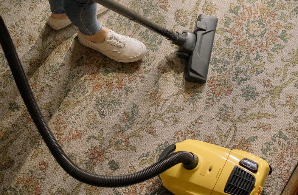See võib olla küll ahvatlev, aga koristamise käigus hoidu nende asjade tõmbamist tolmuimejasse