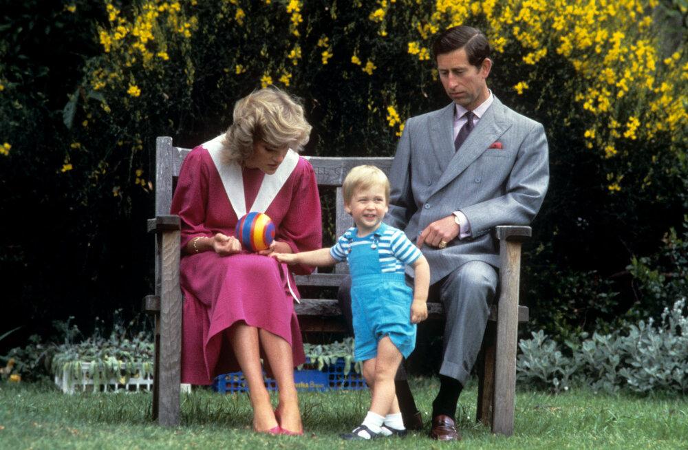Põnev fakt: printsess Diana teatas Williamile prints Charles'i afäärist väga armsal viisl