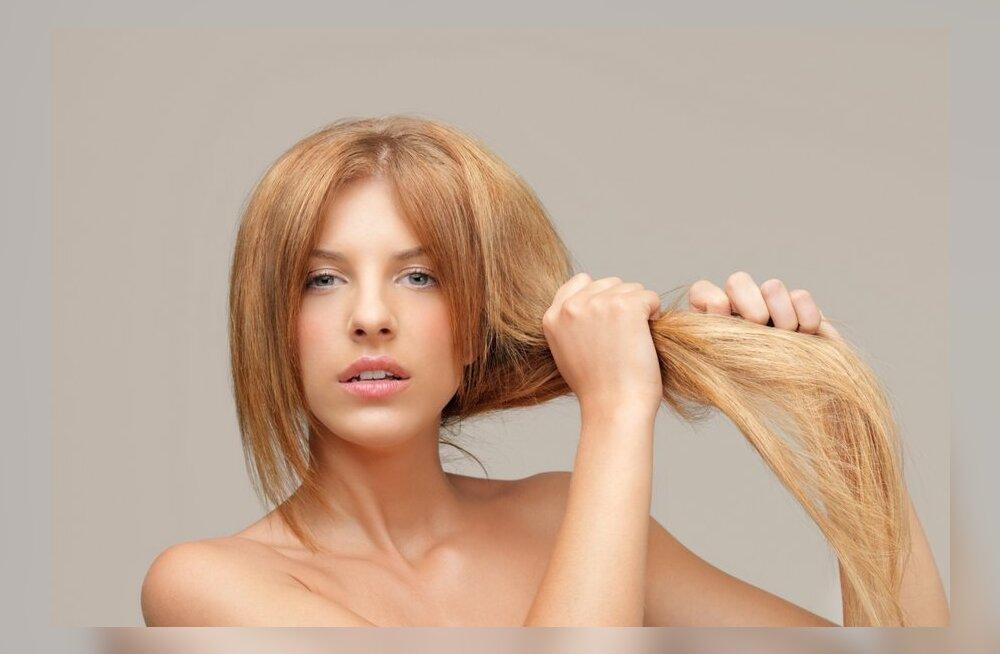Kuus imelist õli — millist vajavad sinu juuksed?