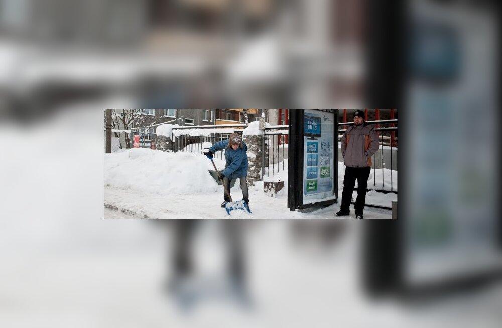 Kolme päevaga veeti ära 13 000 kuupmeetrit lund