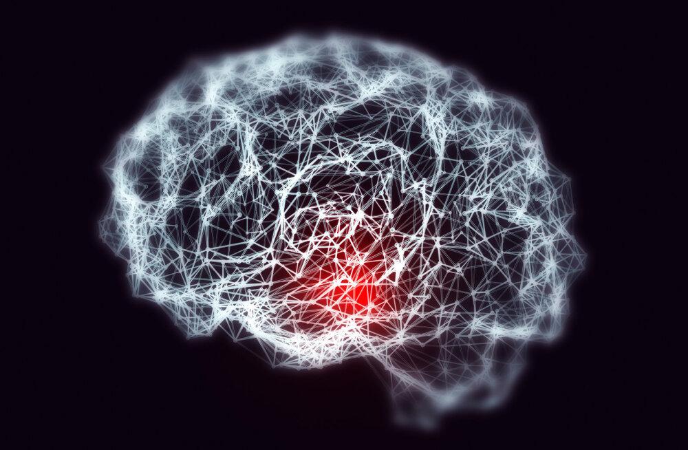 DNA kisub ajju peitunud tapjad päevavalgele