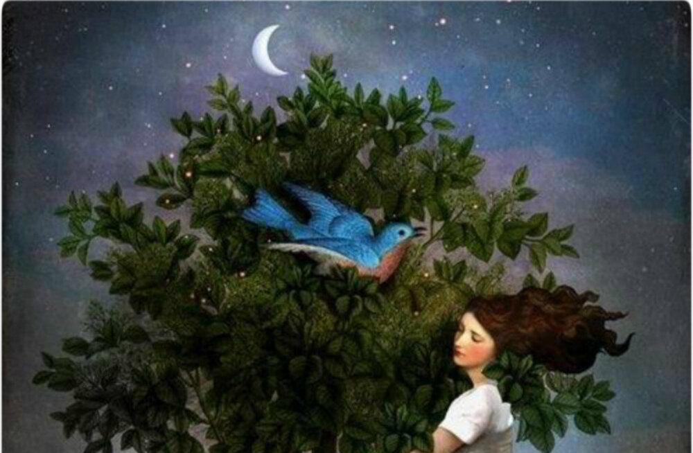 Kuu maagia: tänane vanakuu aitab vabaneda haigustest ja halbadest harjumustest