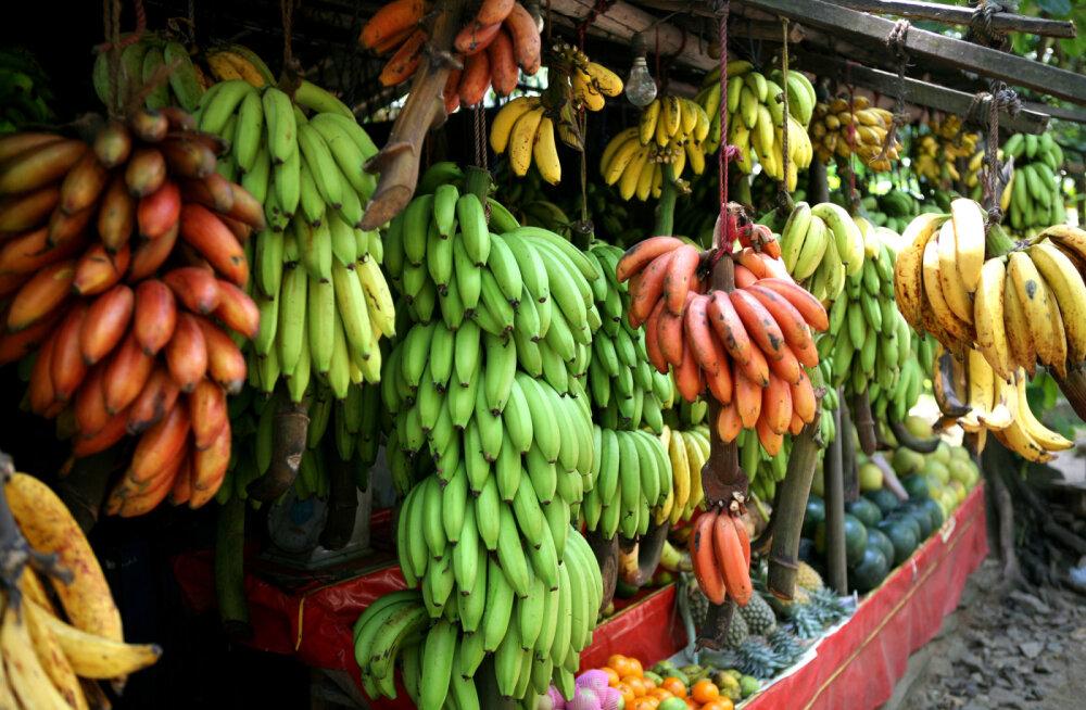 Karm reaalsus: kogu tõde banaanidest