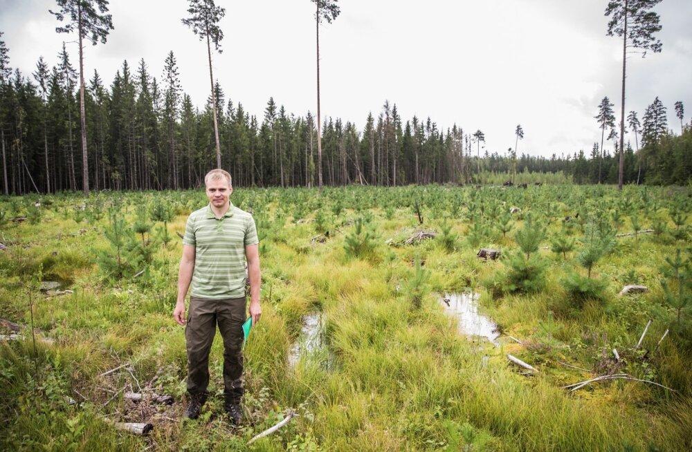 Metsamajandaja Martin Kalk.