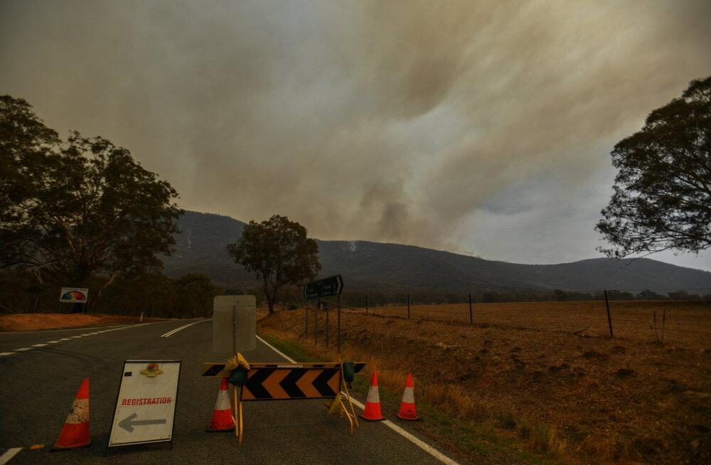 Austraalia võsapõlengute tõttu kuulutati hädaolukord välja pealinnas Canberras