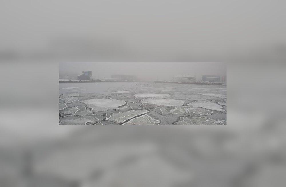 Jääpangad sadamas