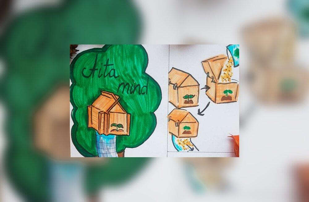 В конкурсе изобретений Страны Лотте победила работа девочки из Ида-Вирумаа
