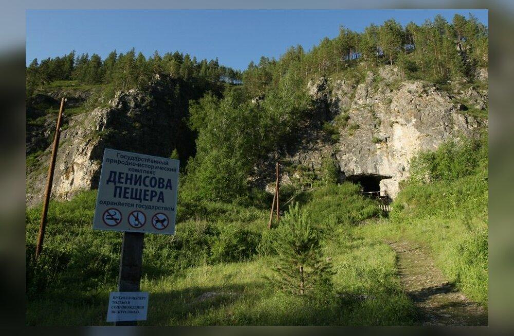 Denisova koopa suu. Foto: Aleksandr Krijašev, RIA Novosti