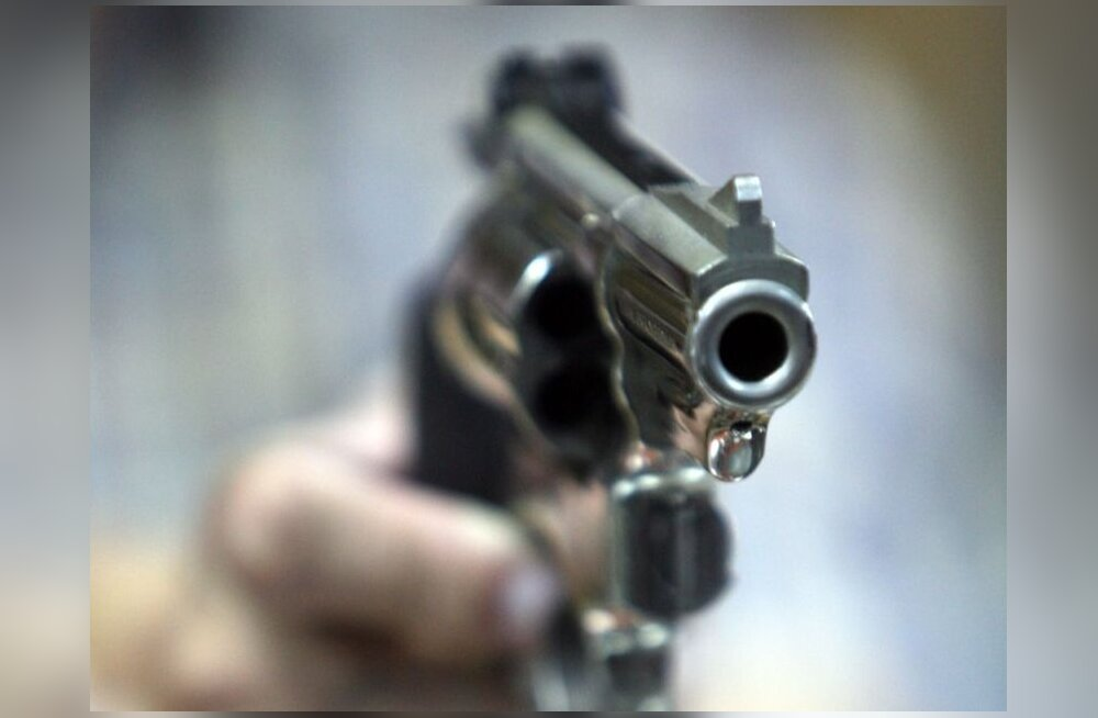 Комиссия: закон об оружии противоречит Конституции