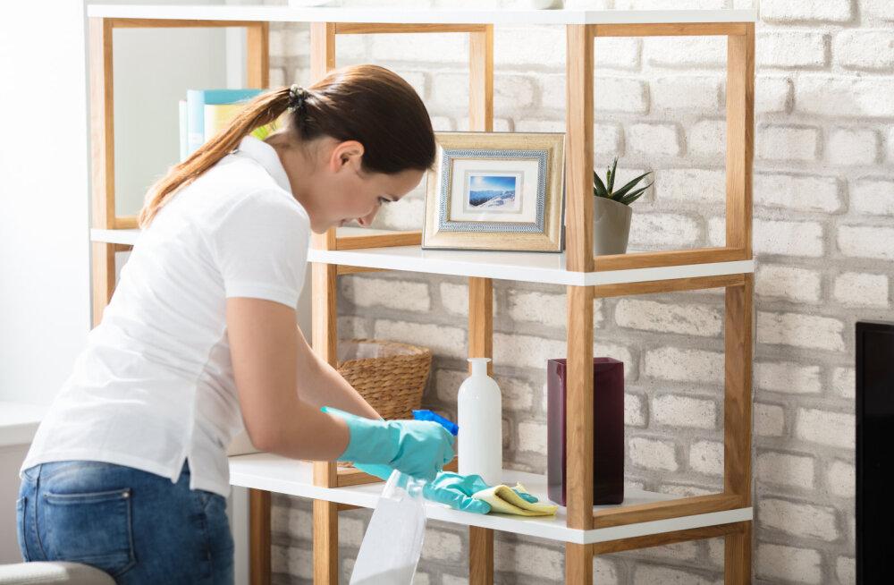 Kaheksa lihtsat nippi, mis tagavad sulle elu lõpuni tolmuvaba kodu