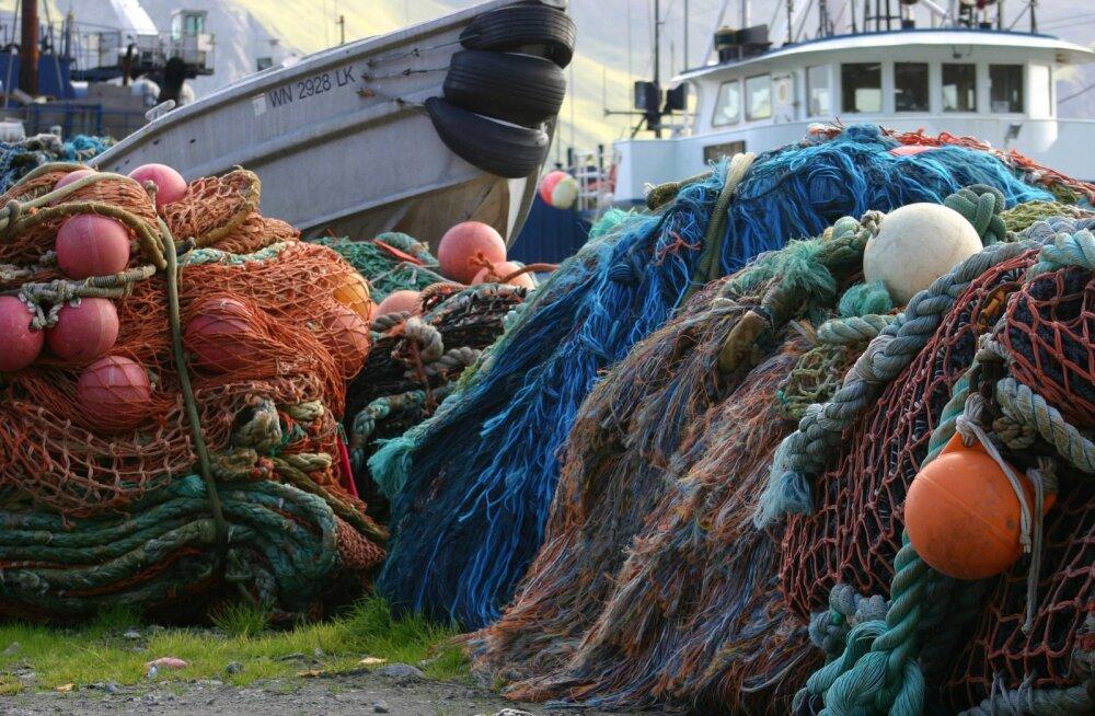 Prantsuse rannal avastati sadade võrkudesse kinnijäänud delfiinide surnukehad