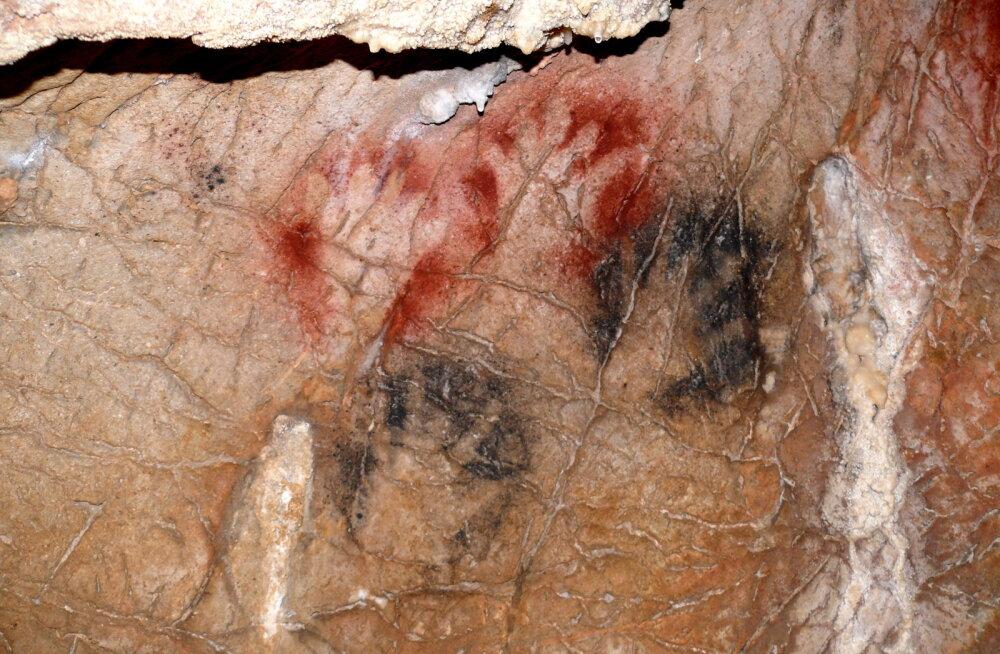 Kummalised koopamaalingud viitavad, et ürginimesed raiusid oma sõrmi otsast