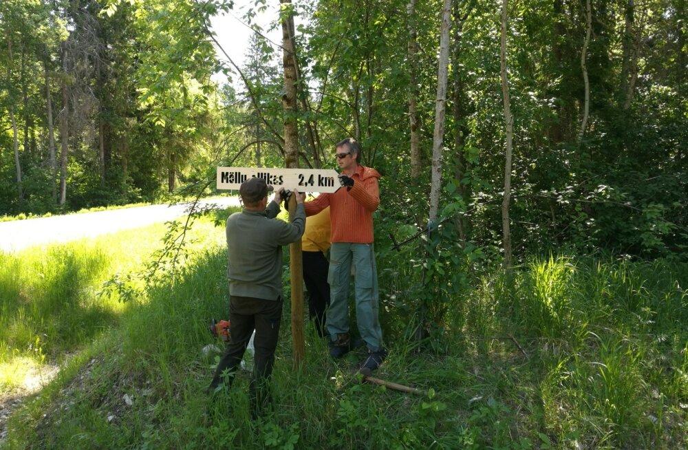 Rada allikani sai teeviitadega märgistatud. Metsas aitab õiget kurssi hoida värviline märgistus puudel.
