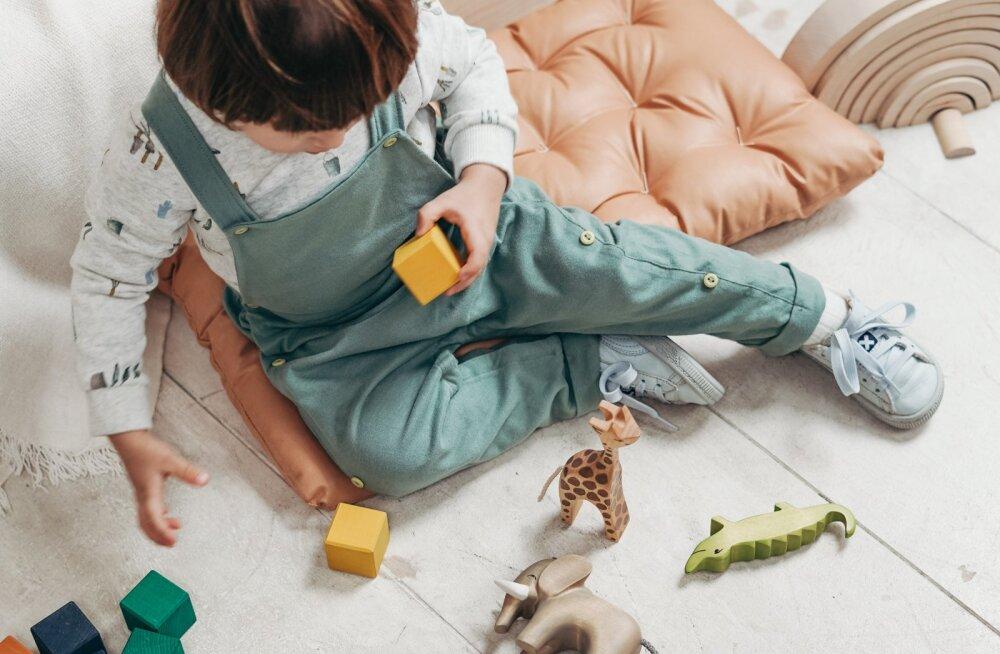 2-летний ребенок убирается дома вместо беременной мамы. Мальчик просто обожает уборку