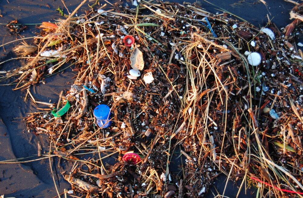 Väikesed vähid seedivad merede plastsaastet väiksemaks