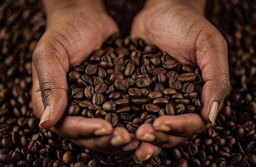 Kofeiin mõõdukas koguses tervist ei kahjusta
