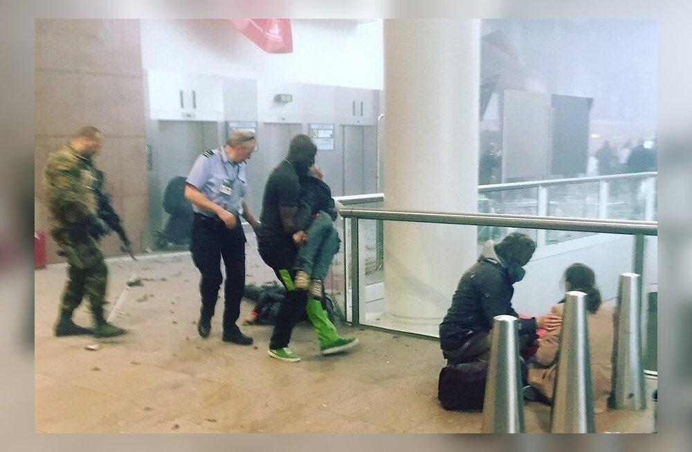 Пережившая взрывы в аэропорту Брюсселя эстонка: мне грустно, я возмущена и разочарована
