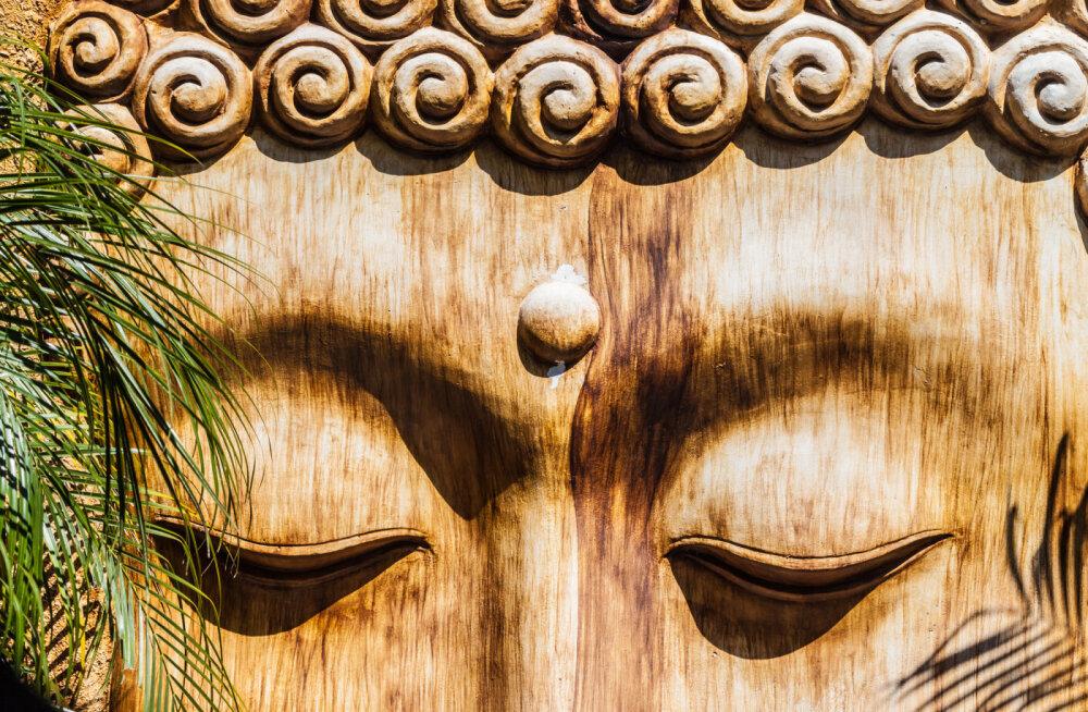 Leia endas rahu: andestuse ja tänulikkuse meditatsioon
