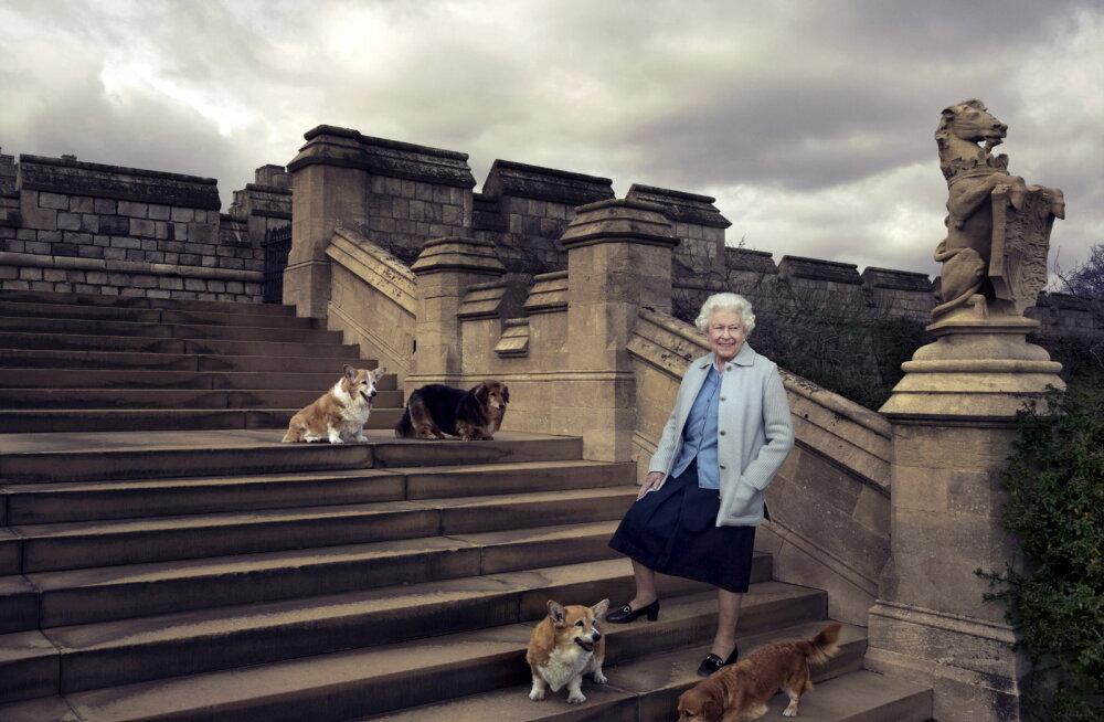 Kuninganna Elizabeth II leinab oma viimast corgi't