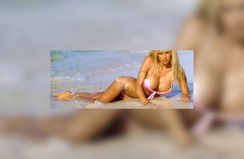 Pamela Anderson kõrvuni armunud
