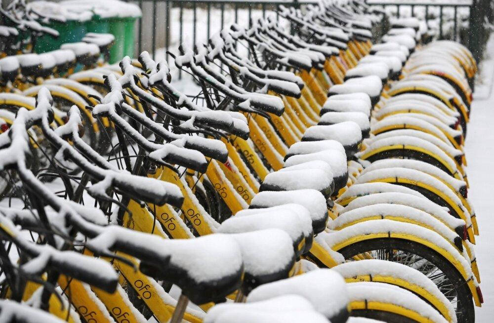 Lumega kaetud Ofo jalgrattad Zhengzhous.