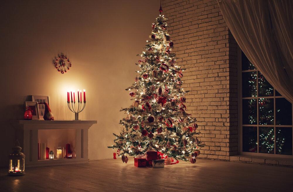 Profid õpetavad: ära sina jõulukuuske ehtima hakates nende põhitõdede vastu eksi!