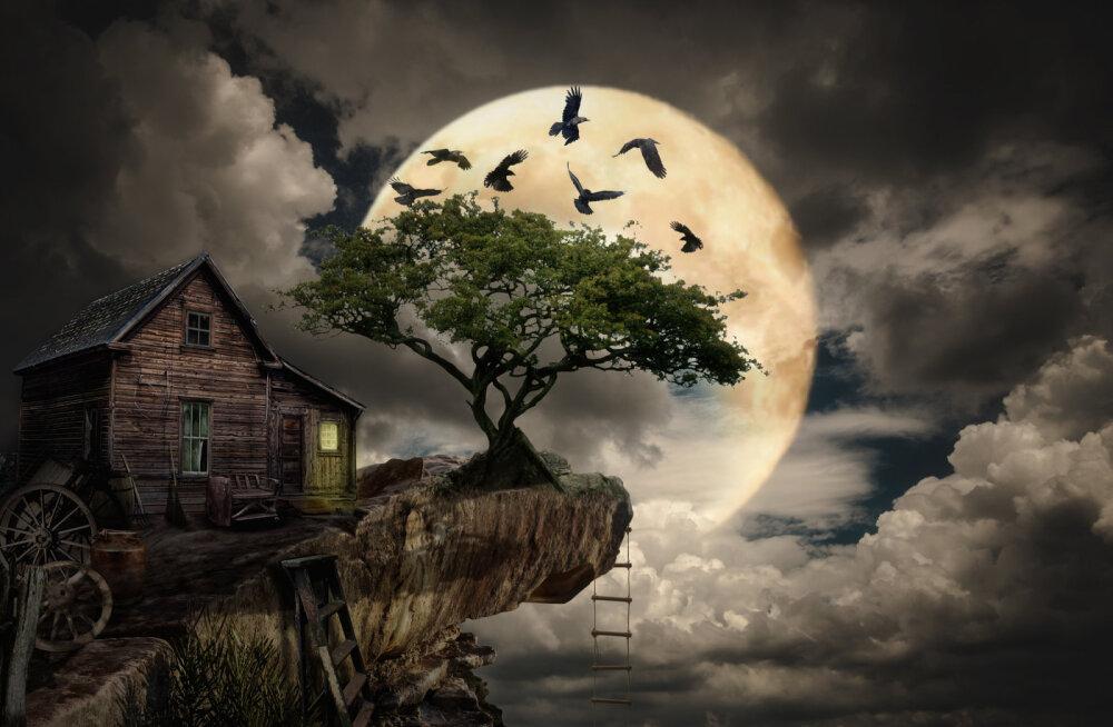Õudusunenägude küüsis: mida tähendab sinu unes nähtud painaja?