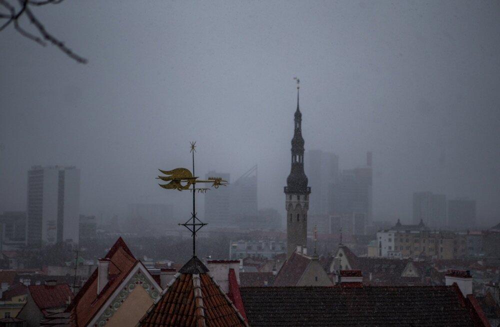 Tallinna raekoda.