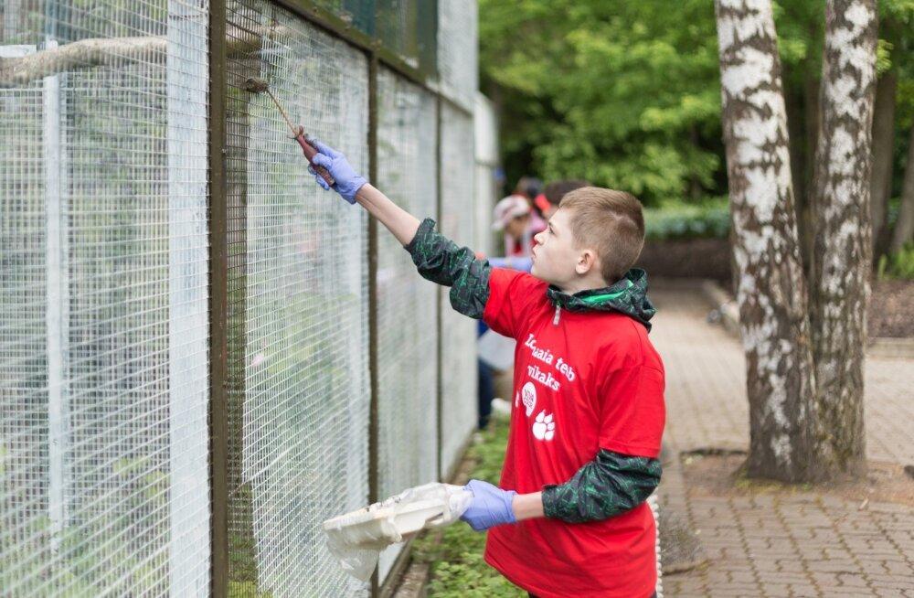 Vabatahtlikud loomaaias 11.06.2016