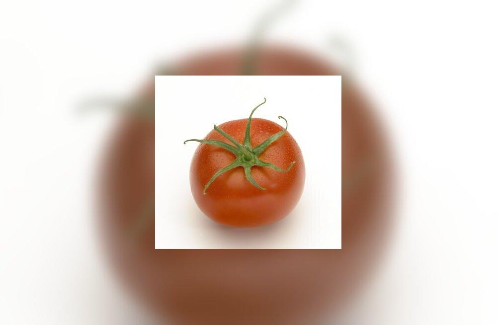 Värske tomat