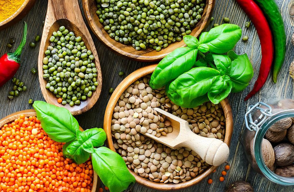Rauapuudus — millest see tekib ja mida süüa, et organism saaks piisavalt rauda?