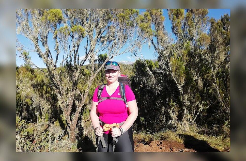 Kilimanjaro — mitte ainult alpinistidele, 4. osa | Tasuta kameeleonid ja varastavad varesed