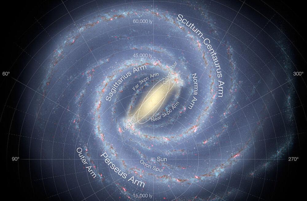 Linnutees on meie galaktikaharu pikkuseks 20 000 valgusaastat