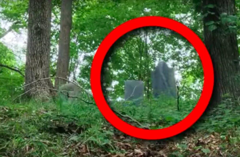 TOP 10 | Kas jalutad viimasel ajal tihti metsas? Vaata, mis on kõige jubedamad asjad, mis kunagi metsast leitud