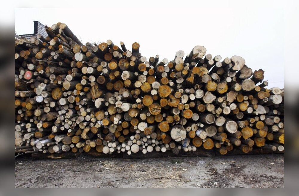 Suvekuudel on hea, kui puiduhinnad vähemalt kukkumist ei jätka
