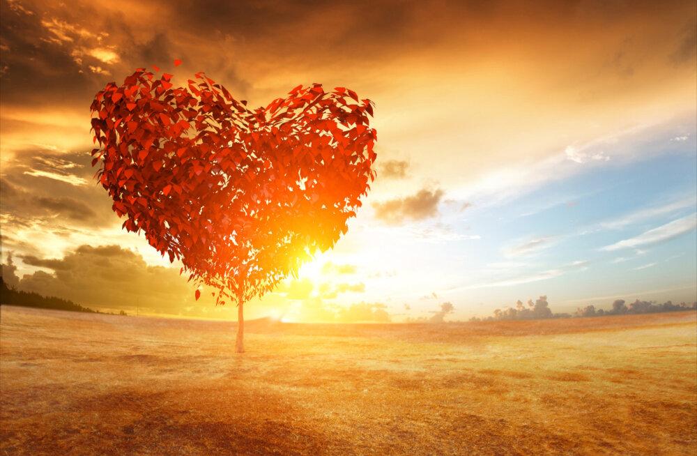 Loo endale armastav maailm