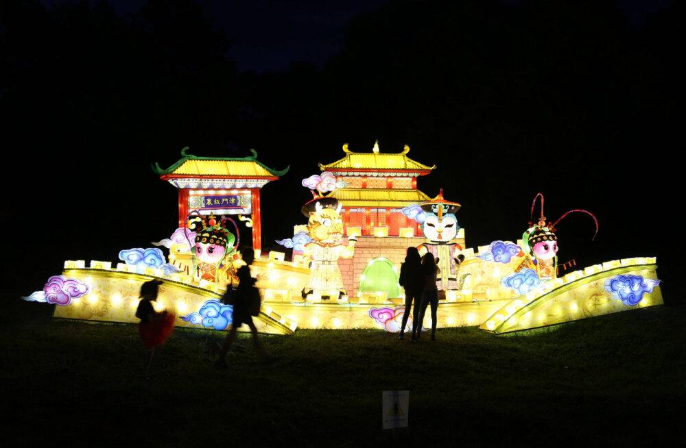 ВИДЕО | В Литве снова пройдет фестиваль китайских фонарей. Смотрите, как это было красиво в прошлом году