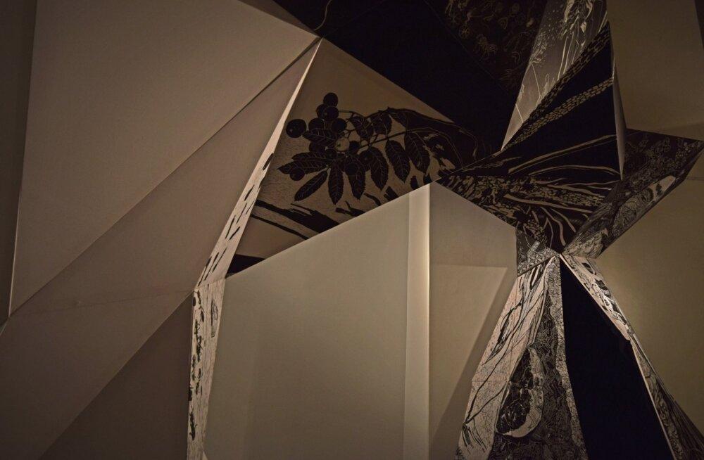 Mari Prekupi ja Hannah Harke ühisnäitus Draakoni galeriis viitab, et inimeste seosed hiiepuud kohates on väga erinevad.