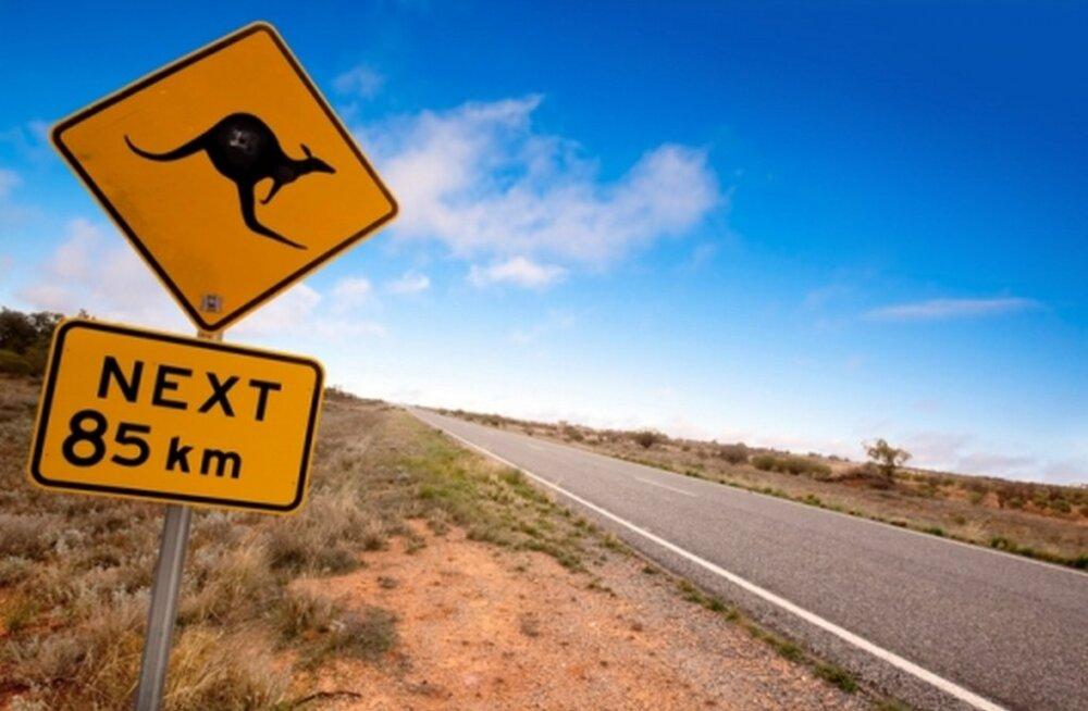 Juristitoolilt rändama ehk seiklus Austraalias 26: Milline elu meil on? Õige – ebastabiilne