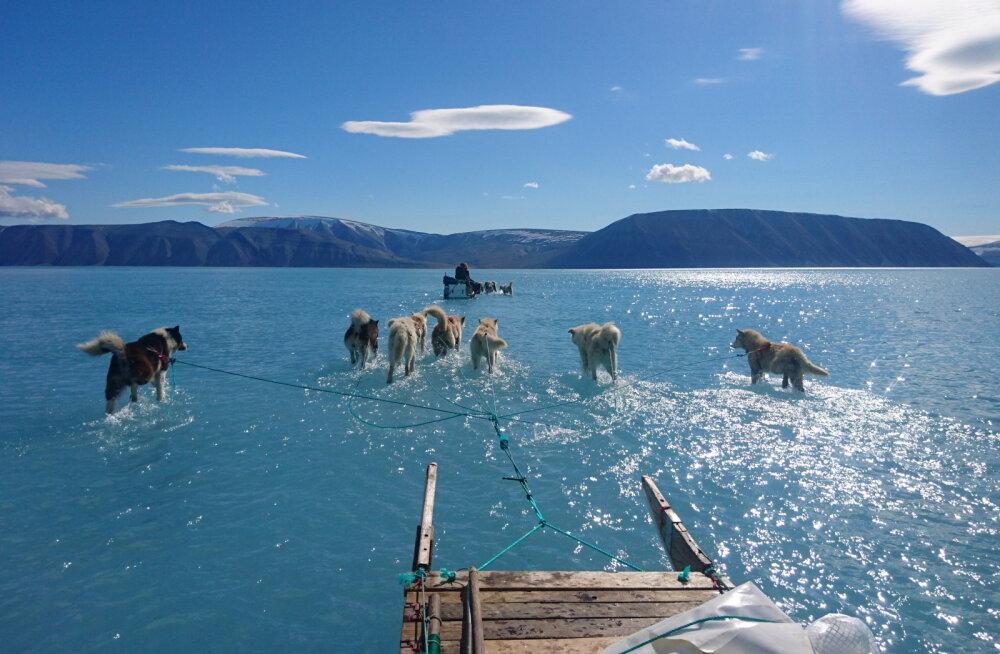 Gröönimaa laskis juulis maailmamerre 200 miljardit tonni vett