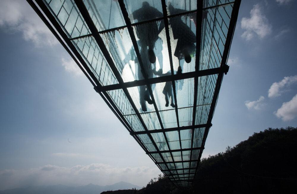 Десятки китайских туристов застыли на самом длинном стеклянном мосту в мире