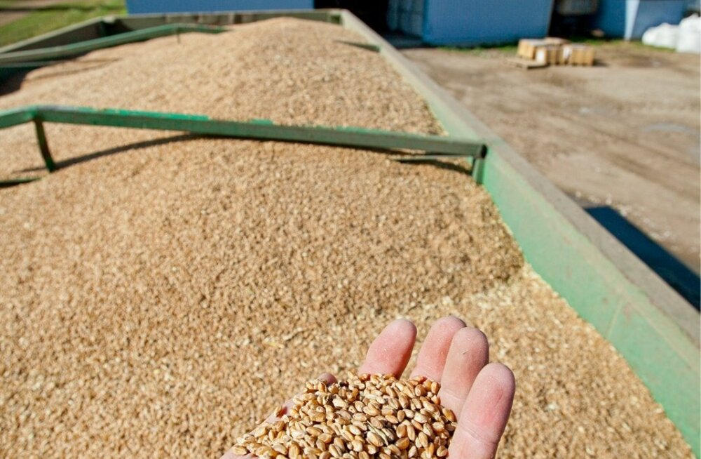 В Европе ожидается резкий рост затрат на производство продуктов питания